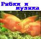 Музыка и рыбки