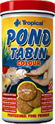 korm_fish_Tropical  POND Tabin